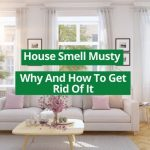 house smell musty