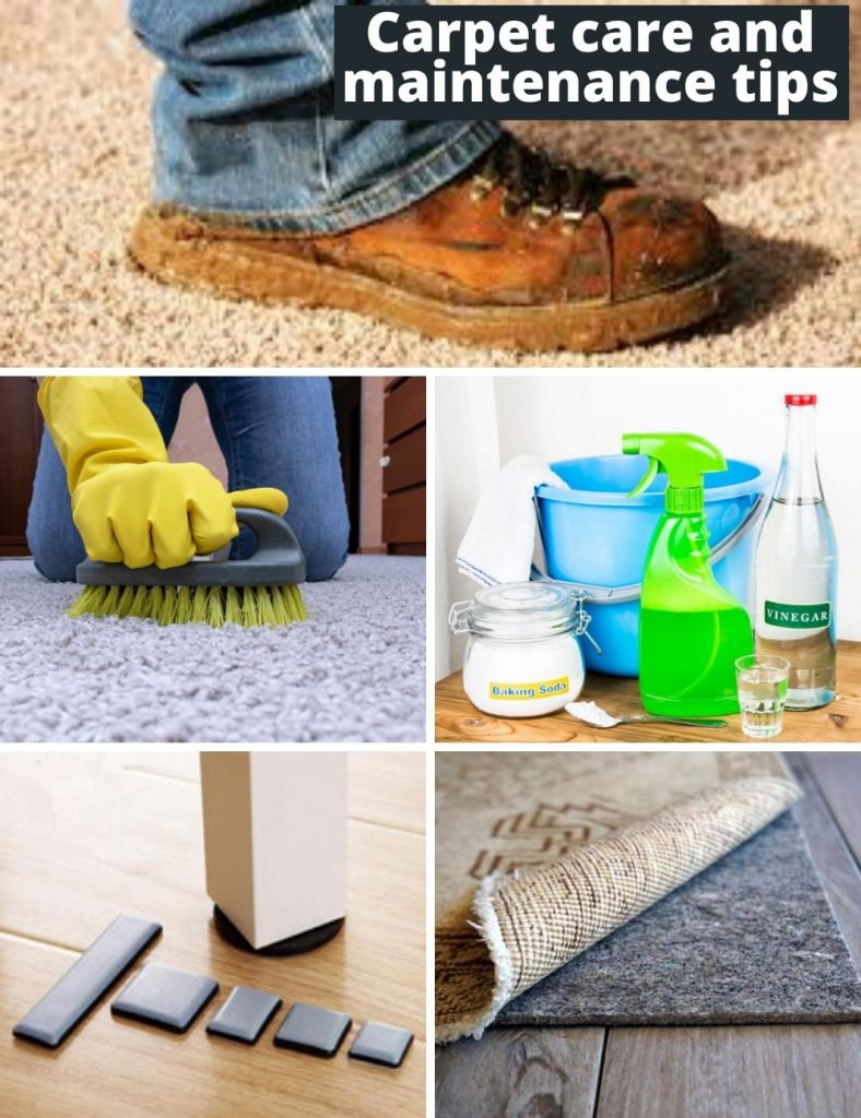 Carpet care and maintenance tips
