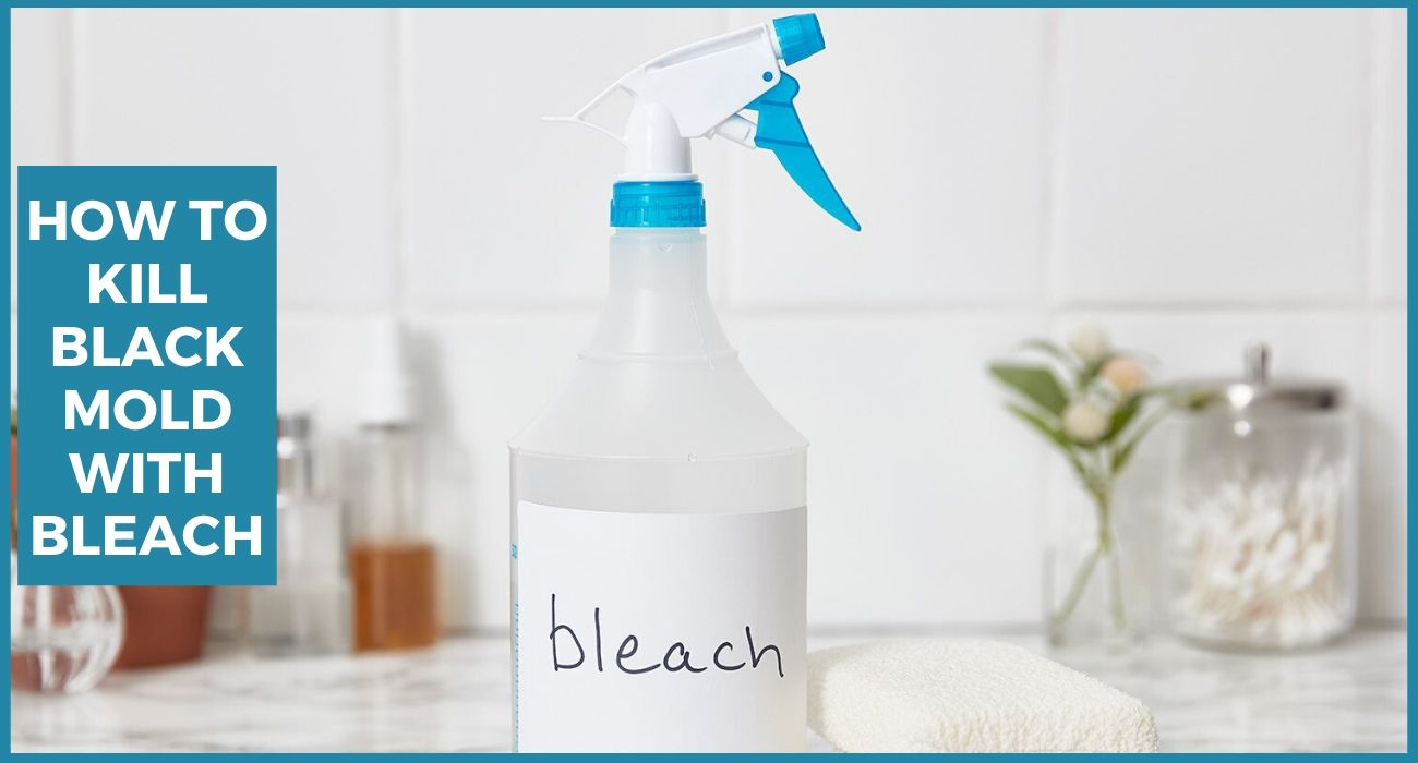 How to Kill Black Mold with Bleach