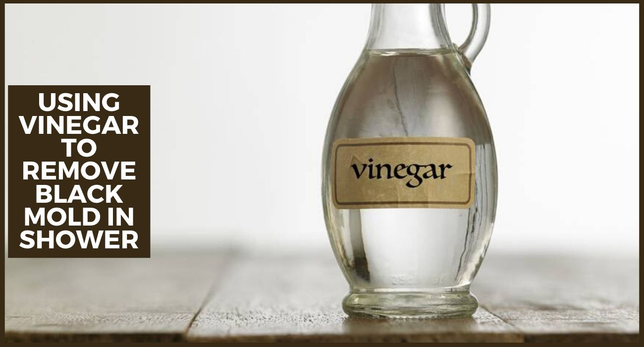 Using Vinegar to Remove Black Mold in Shower