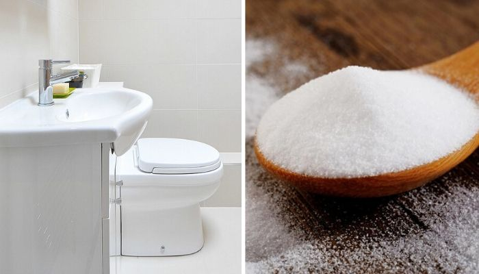 unclog a toilet with salt
