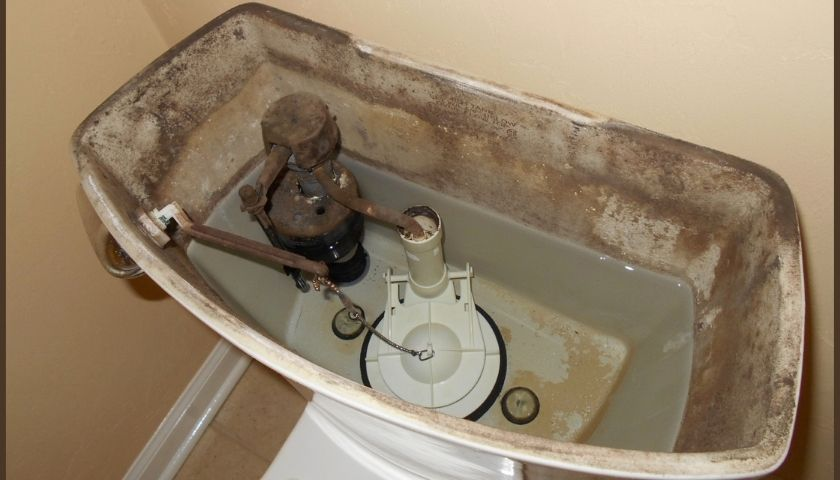 How to Remove Mold in Toilet Tank