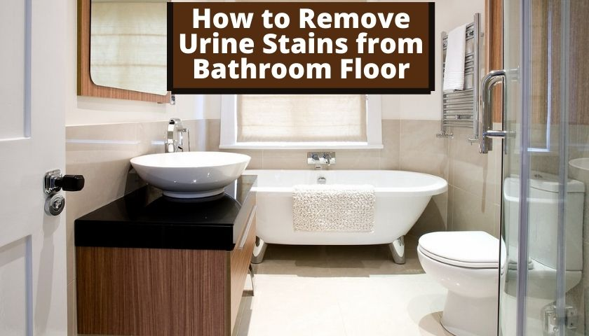How to Remove Urine Stains from Bathroom Floor