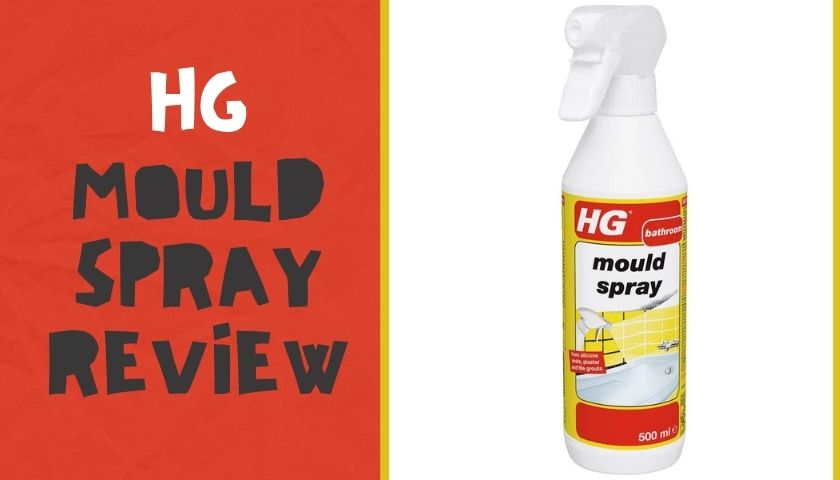 HG mould spray review