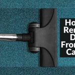 how to remove dust from the carpet