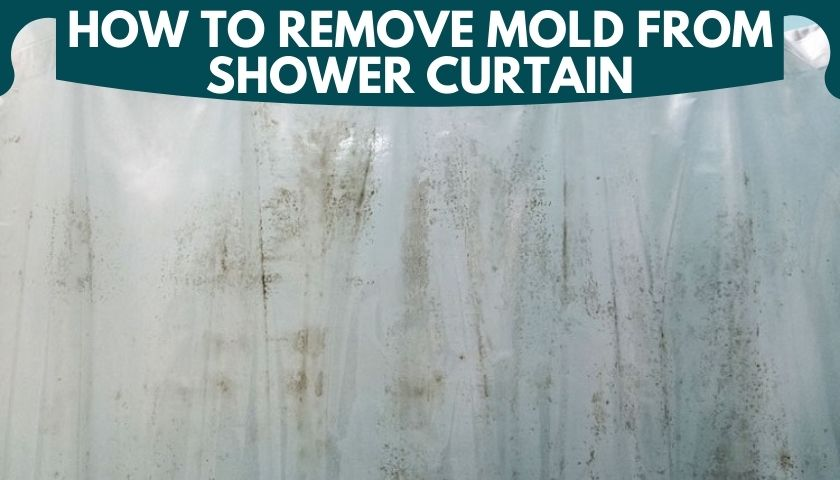 How to Remove Mold from Shower Curtain