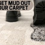 How Get Mud Out of Your Carpet