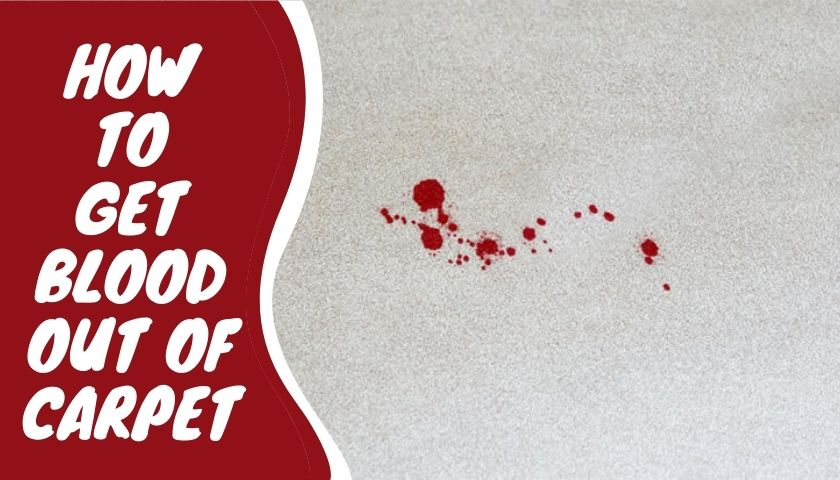 how get blood out of carpet