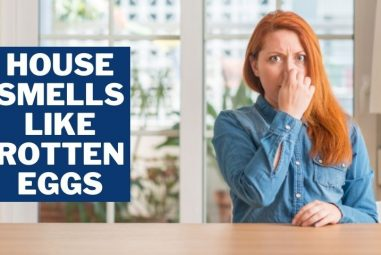 House smells Like Rotten Eggs | Why & How to Get Rid of