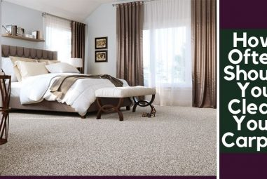 How Often Should You Clean Your Carpet | Know in Details