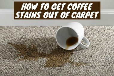 How to Get Coffee Stains Out of Carpet | With Easy Solutions