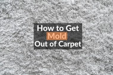 How to Get Mold Out of Carpet | Easily & Naturally