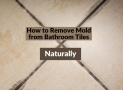 How to Remove Mold from Bathroom Tiles Naturally