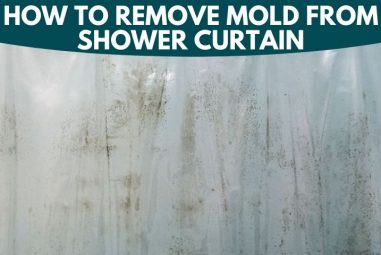 How to Remove Mold from Shower Curtain | Here is the Solution