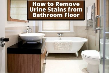 How to Remove Urine Stains from Bathroom Floor | Step by Step
