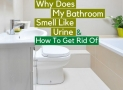 Why Does My Bathroom Smell Like Urine & How to Get Rid of
