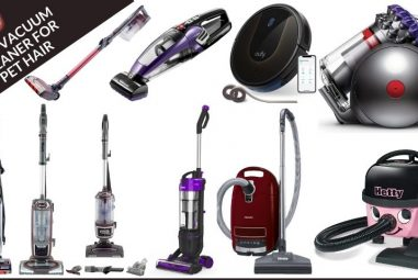 The 10 Best Vacuum Cleaners for Pet Hair to Buy in 2021