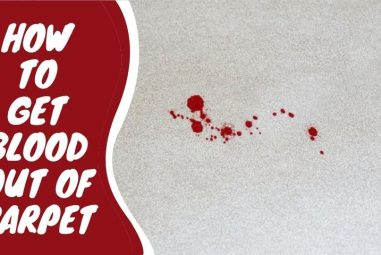 How to Get Blood Out of Carpet | 17 Powerful Hacks