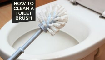 How to Clean a Toilet Brush   3 Simple Techniques