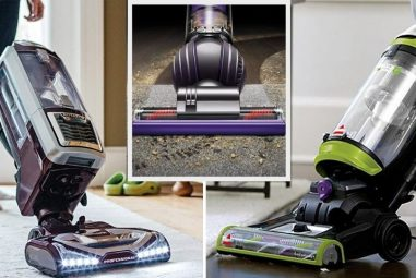 How to Clean a Vacuum Filter | Shark Dyson & Bissell