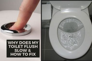 Why Does My Toilet Flush Slow & Incompletely | How to Fix